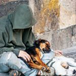 Homeless youth with pets less depressed, less likely to use drugs