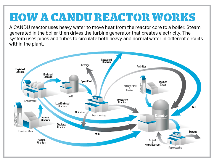 How a CANDU reactor works