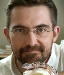 Ontario Veterinary College professor Matthew Vickaryous poses with a gecko lizard